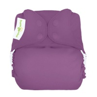 bumGenius Freetime All-In-One One-Size Cloth Nappy Jelly