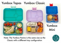 Yumbox Replacement Latch